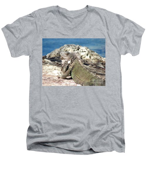 Iguana In The Sun Men's V-Neck T-Shirt