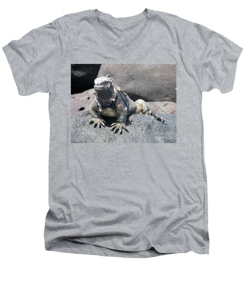 Iguana Or Prehistory Survivor Men's V-Neck T-Shirt