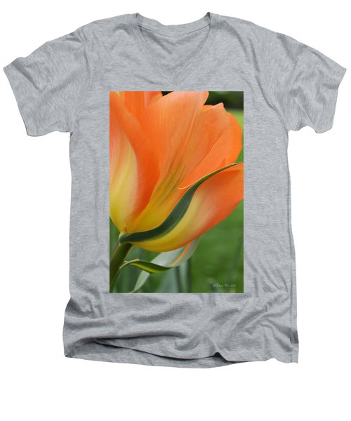 Imperfect Beauty Men's V-Neck T-Shirt