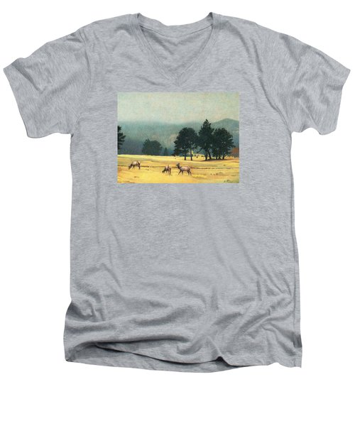 Impression Evergreen Colorado Men's V-Neck T-Shirt