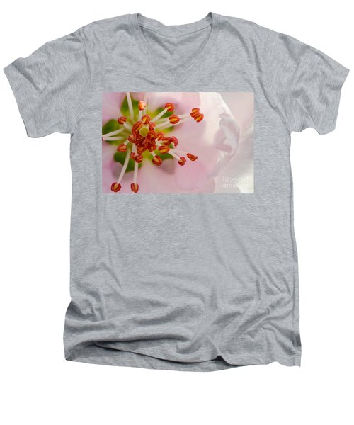 In A Pink Cloud Men's V-Neck T-Shirt