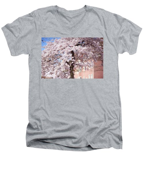 In Its Glory. Pink Spring In Amsterdam Men's V-Neck T-Shirt