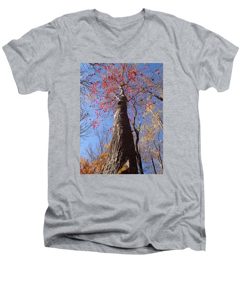 In The Woods 1 Men's V-Neck T-Shirt
