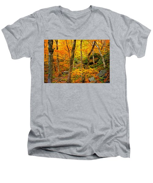 Men's V-Neck T-Shirt featuring the photograph In The Woods by Bill Howard
