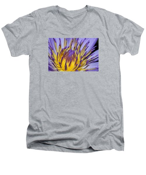 Men's V-Neck T-Shirt featuring the photograph Inner Sanctum by Judy Whitton