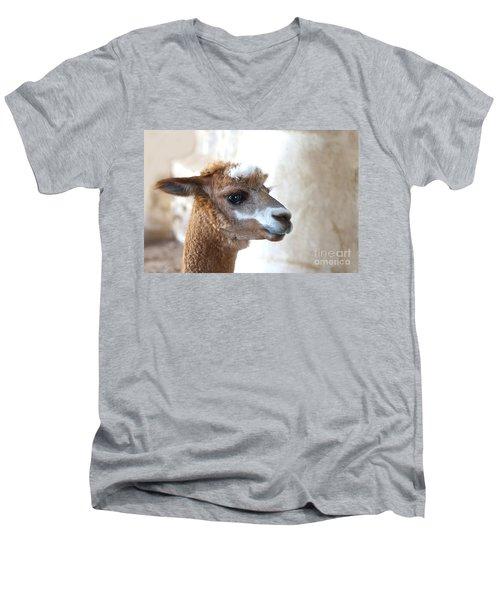 Innocence Men's V-Neck T-Shirt