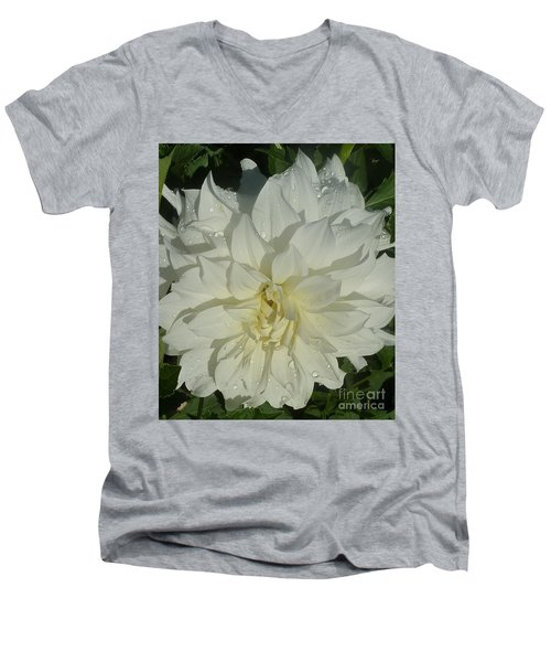 Men's V-Neck T-Shirt featuring the photograph Innocent White Dahlia  by Susan Garren