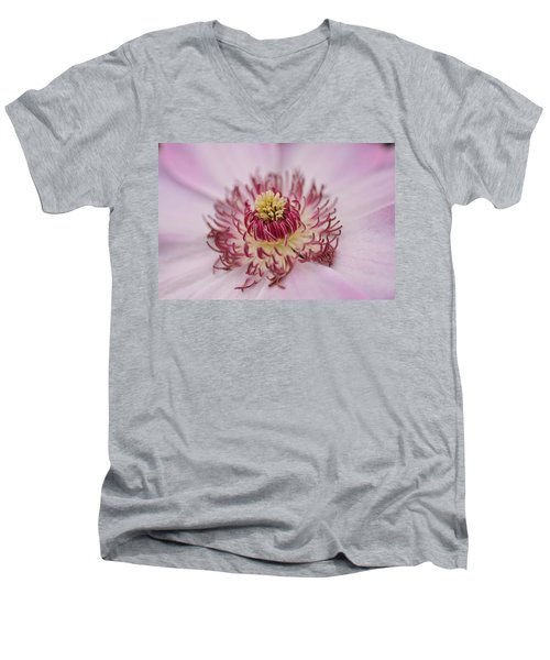 Inside The Flower Men's V-Neck T-Shirt