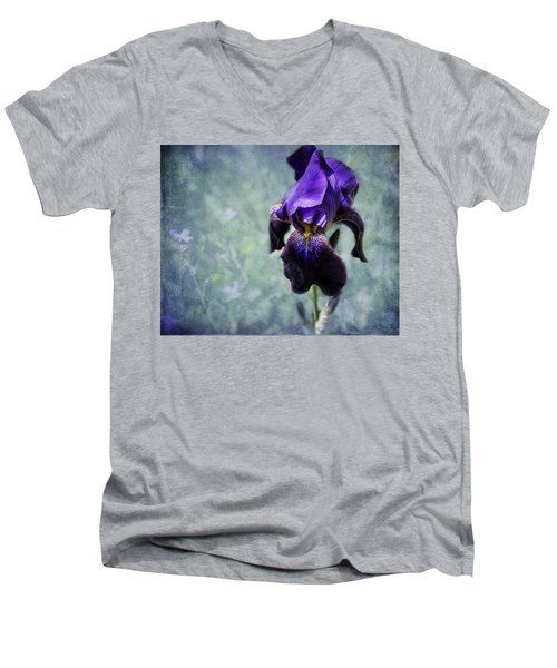 Iris - Purple And Blue - Flowers Men's V-Neck T-Shirt