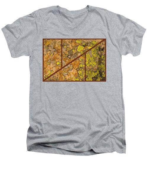 Iron And Lichen Men's V-Neck T-Shirt