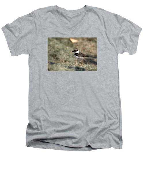 Its A Killdeer Babe Men's V-Neck T-Shirt by Skip Willits