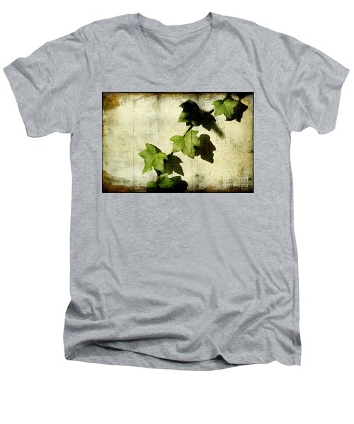 Ivy Men's V-Neck T-Shirt