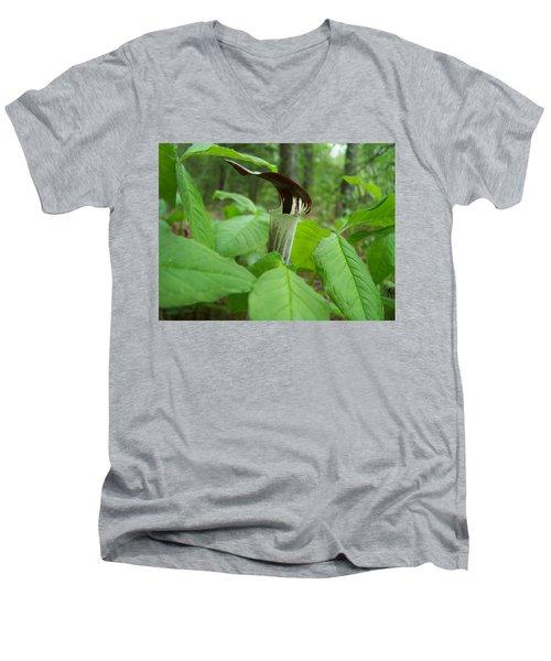 Jack In The Pulpit Men's V-Neck T-Shirt