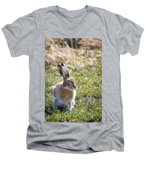 Jackrabbit Men's V-Neck T-Shirt
