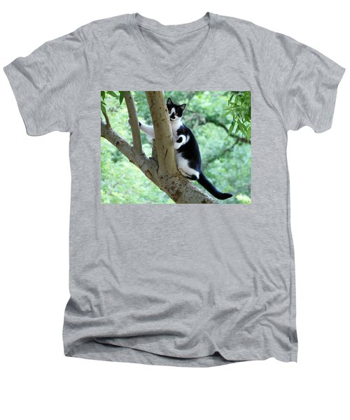 Jade Men's V-Neck T-Shirt