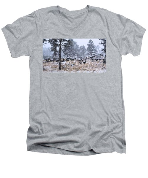 January Snow Men's V-Neck T-Shirt