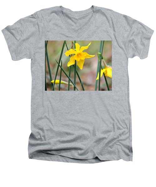 Men's V-Neck T-Shirt featuring the photograph Johnny-jump-up by Kim Pate