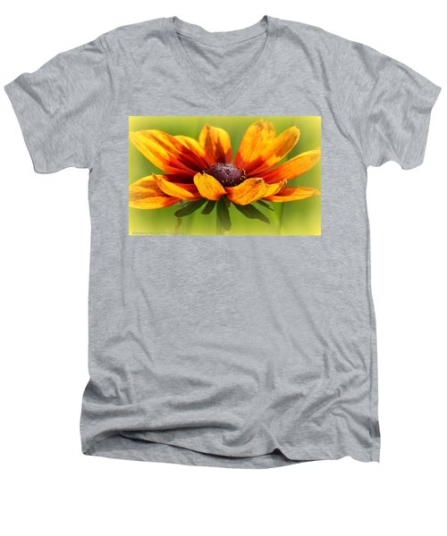 Judy Men's V-Neck T-Shirt