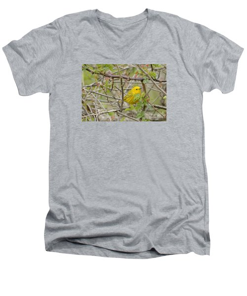 Just Brightening Your Day Men's V-Neck T-Shirt by Randy Bodkins