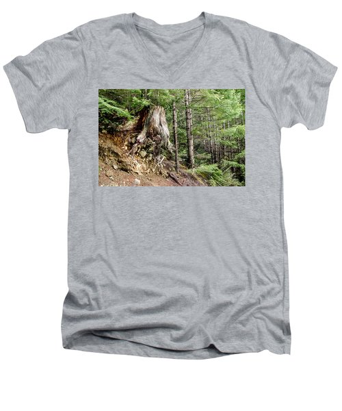 Just Hanging On Old Growth Forest Stump Men's V-Neck T-Shirt by Roxy Hurtubise