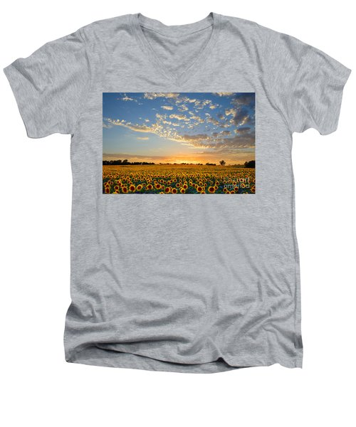 Kansas Sunflowers At Sunset Men's V-Neck T-Shirt by Catherine Sherman
