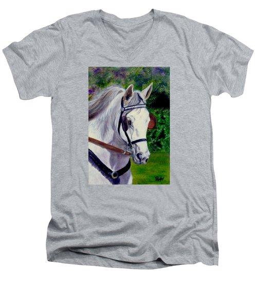 Katies Bailey Men's V-Neck T-Shirt