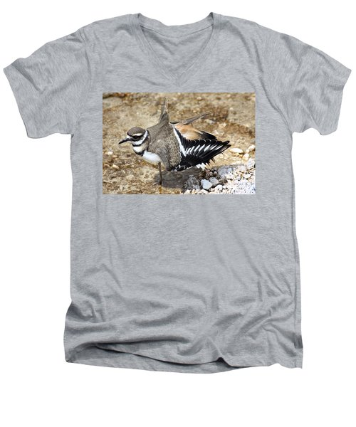 Men's V-Neck T-Shirt featuring the photograph Killdeer Fakeout by Shane Bechler