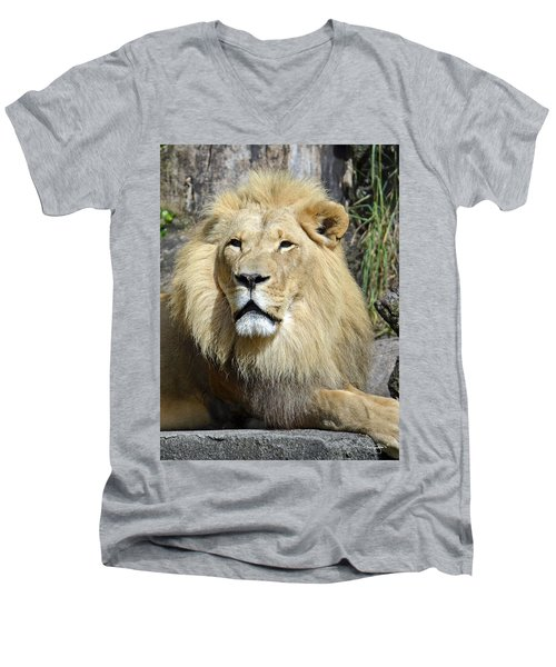King Of Beasts Men's V-Neck T-Shirt