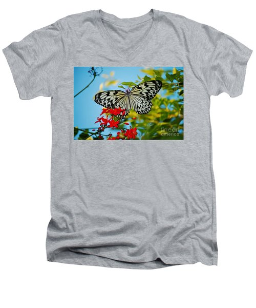 Kite Butterfly Men's V-Neck T-Shirt