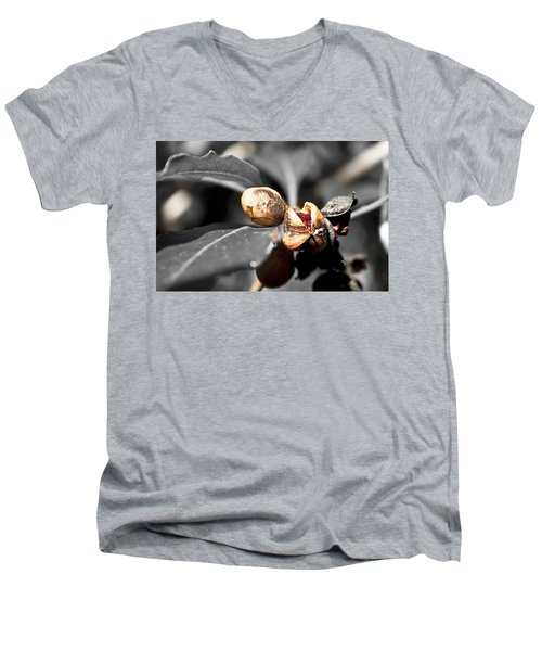Men's V-Neck T-Shirt featuring the photograph Knew Seeds Of Complentation by Miroslava Jurcik