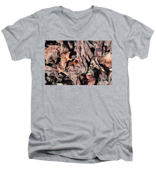Lady Bug In Spring Men's V-Neck T-Shirt