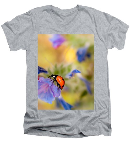 Ladybird Men's V-Neck T-Shirt