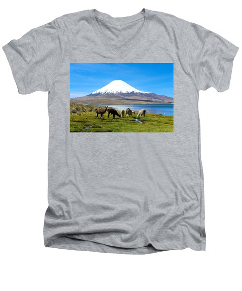 Lake Chungara Chilean Andes Men's V-Neck T-Shirt