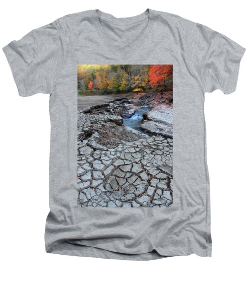 Lake No More Men's V-Neck T-Shirt