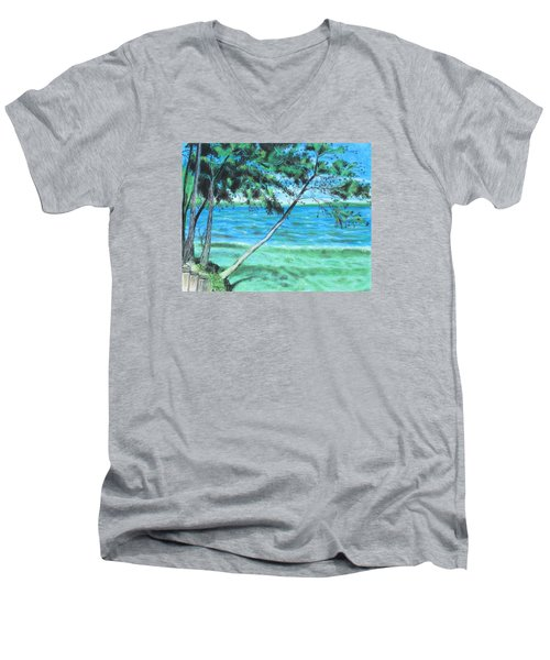 Lakeland 3 Men's V-Neck T-Shirt
