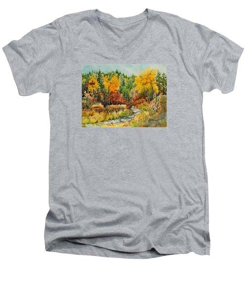 Latah Creek Fall Colors Men's V-Neck T-Shirt