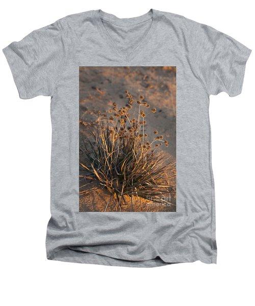 Late Day Color Men's V-Neck T-Shirt