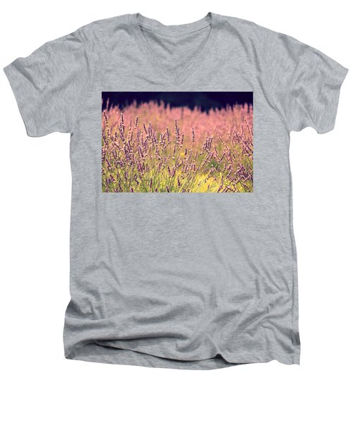 Men's V-Neck T-Shirt featuring the photograph Lavender Dreams by Lynn Sprowl
