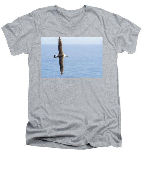 Laysan Albatross No 1 - Kilauea - Kauai - Hawaii Men's V-Neck T-Shirt