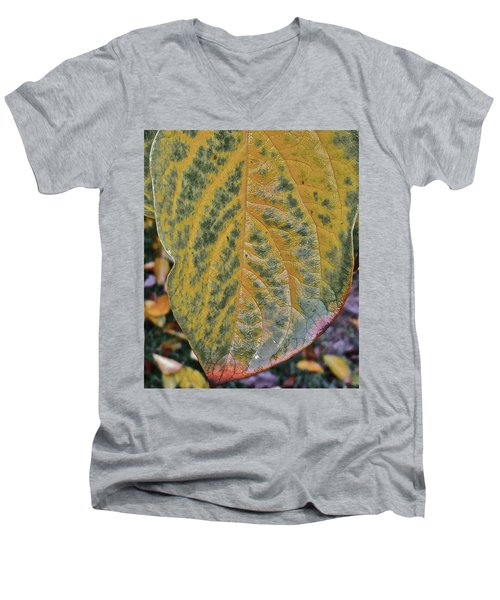 Men's V-Neck T-Shirt featuring the photograph Leaf After Rain by Bill Owen