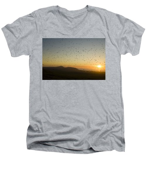 Least Auklets, Returning To Their Nest Men's V-Neck T-Shirt by Brian Guzzetti