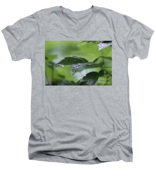 Leaves In The Rain Men's V-Neck T-Shirt