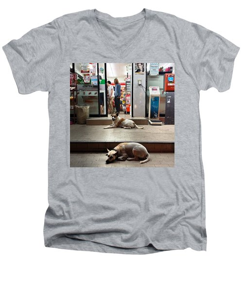 Men's V-Neck T-Shirt featuring the photograph Let Sleeping Dogs Lie Where They May by Mr Photojimsf