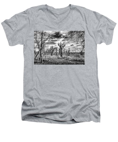 Men's V-Neck T-Shirt featuring the photograph Levy Lake by Howard Salmon