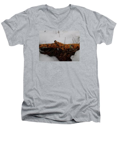 Men's V-Neck T-Shirt featuring the photograph Lichen N'snow by Robert Nickologianis