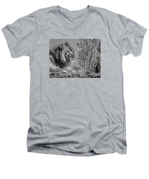 Watching Intently Men's V-Neck T-Shirt