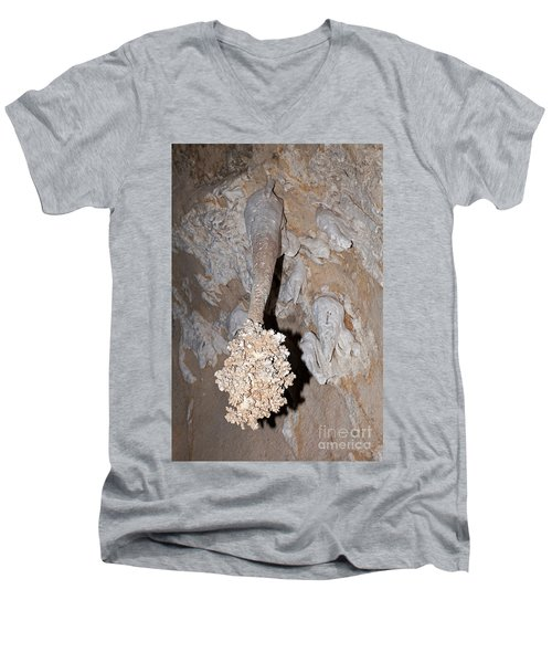 Lions Tail Carlsbad Caverns National Park Men's V-Neck T-Shirt