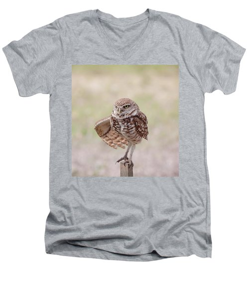 Little One Men's V-Neck T-Shirt