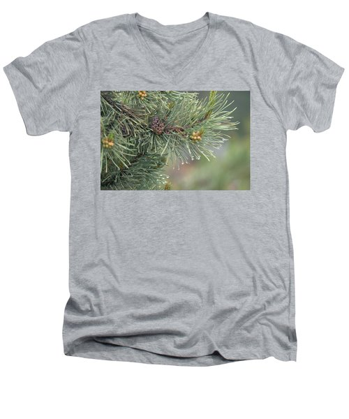 Lodge Pole Pine In The Fog Men's V-Neck T-Shirt