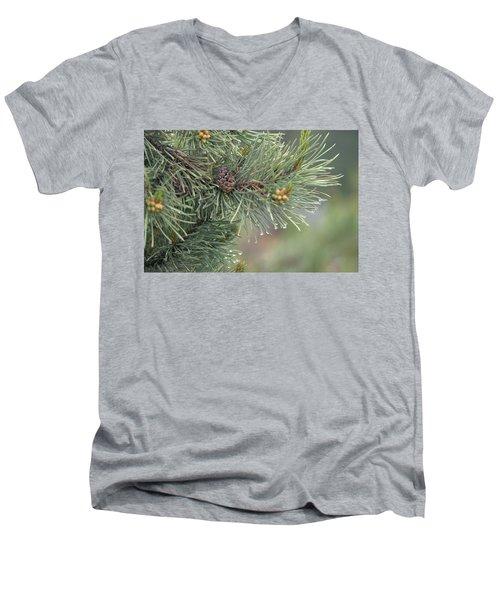 Lodge Pole Pine In The Fog Men's V-Neck T-Shirt